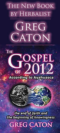 The Gospel of 2012 According to Ayahuasca